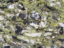 White marble rock coated by yellow and black crusty lichens Stock Photo