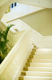 White marble stairs Stock Images