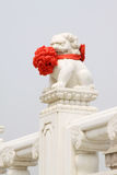 White marble statue of the material stone lions, Chinese traditi Royalty Free Stock Image