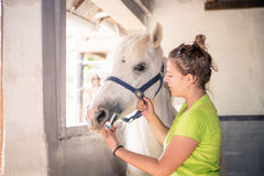 White mare gets a cure from a young veterinarian Stock Photos