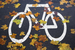 White mark bicycle lane at Royalty Free Stock Images