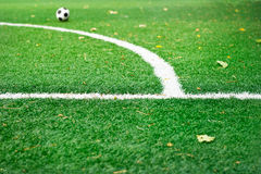 White mark line on green grass field soccer in the park, selective focus on mark line Stock Image