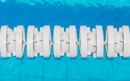 The white marked lanes is floating in swimming pool. Royalty Free Stock Photos
