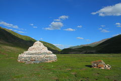 White Marnyi Stones on Tibetan Plateau Royalty Free Stock Image