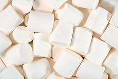 White marshmallow background Stock Images