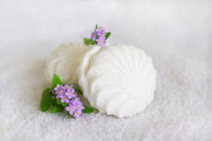 White marshmallow and forget-me-not on a white background Stock Photos