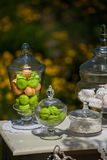 White marshmallows. green and pink marshmallows. candied fruit on a white table Stock Image