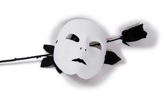 White Mask Black Rose royalty free stock photo