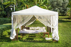 White massage tent under a green palm trees. White spa tent under a green palm trees stock photo