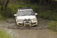 White Mazda BT-50 4x4 3L crossing muddy pond Royalty Free Stock Image