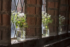 White meadow flowers in the windows of an old monastery Stock Photos
