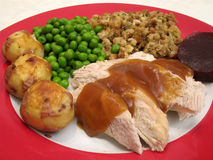 White Meat Turkey & Trimmings royalty free stock images