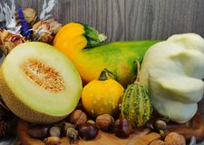 White melon, squash, pumpkin and patison - Vegetables from the family Cucurbitaceae Royalty Free Stock Photo