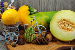 White melon, squash, pumpkin and patison - Vegetables from the family Cucurbitaceae Stock Image