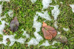 Abstract phot from the fallen first snow on the ground. Royalty Free Stock Photo