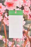 White memo paper hanging on beautiful tree Royalty Free Stock Photos