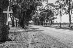 A white memorial cross on a tree marks the place of a road fatal. Ity in rural Australia royalty free stock photo