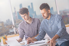 White men working on project. Two handsome white males working on project in modern office Royalty Free Stock Photos