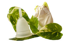 White menstrual cup with green leaves and little beige bag isola Royalty Free Stock Image