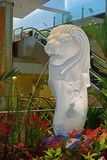 White merlion in Singapore Changi Airport Terminal 2 surrounded by flowers and plants Royalty Free Stock Photos