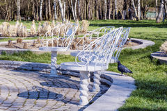 White metal chairs in the park Royalty Free Stock Images
