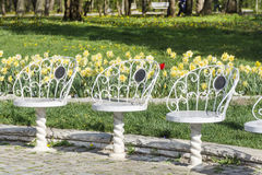 White metal chairs  in a spring park Royalty Free Stock Images