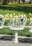 White metal chairs  in a spring park Royalty Free Stock Photography
