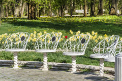 White metal chairs  in a spring park Stock Photos