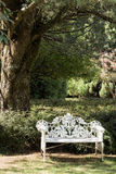 White metal garden seat bench under tree. Empty white metal garden seat underneath large tree dappled in shade Royalty Free Stock Photo