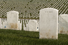 White Military Tombstones Royalty Free Stock Images