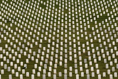 White Military Tombstones Royalty Free Stock Image