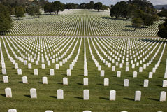 White Military Tombstones Stock Images