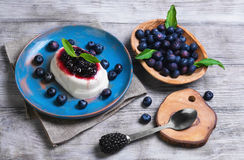White milky creamy berry pudding Royalty Free Stock Image