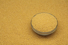 White millet in a glass dish Stock Photography