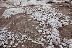 White Mineral Deposit Clings ot Rocks In Muddy Wash. In desert Stock Photos