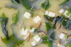 White Miso soup Royalty Free Stock Photography