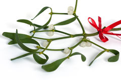 White mistletoe. Christmas mistletoe with a red bow stock images