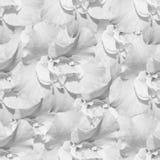 White monochrome seamless background with azaleas Royalty Free Stock Image