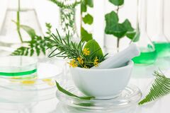 Free White Mortar And Pestle With Herbs Stock Image - 172892141