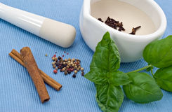 White mortar, herbs and spices Stock Image