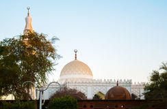 White mosque in the green palms in Egypt Royalty Free Stock Images