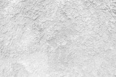 White Moss Wall. Royalty Free Stock Images