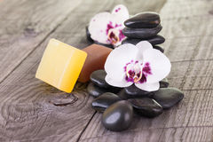 White Moth orchids and black stones on weathered deck Stock Photography
