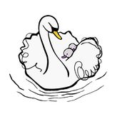 White mother swan takes babies on her back royalty free illustration