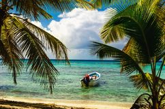 White motorboat moored on exotic coast with beautiful amazing palm trees entering the sea, Dominican Republic. Caribbean Islands, Central America Stock Photo