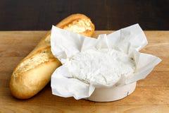 White mould cheese. Stock Photos