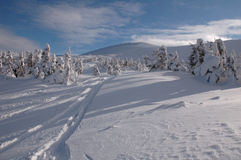 White mountain. Carpathian mountains, back country tour (freeride) near ski resort Dragobrat Stock Photos