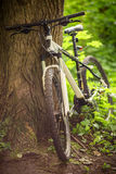 White mountain bike Stock Photos