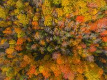 White Mountain National Forest top view, New Hampshire, USA