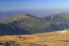 White Mountains. Alpine meadow on the top of New Hampshire's White Mountains Stock Image
